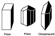 Monoclinic Crystal Shapes